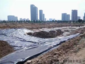 浙江人工湖防渗土工膜施工