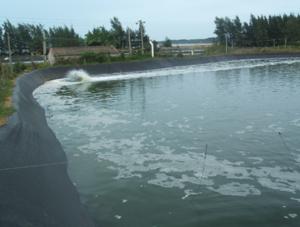 污水池防渗膜